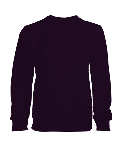 Kadın Sweatshirt - Thumbnail
