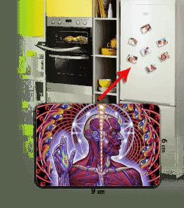 House of Geek - Lateralus Kişiye Özel Buzdolabı Magneti