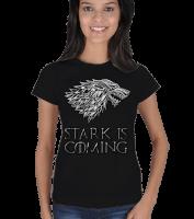vatsap - stark is coming Kadın Tişört